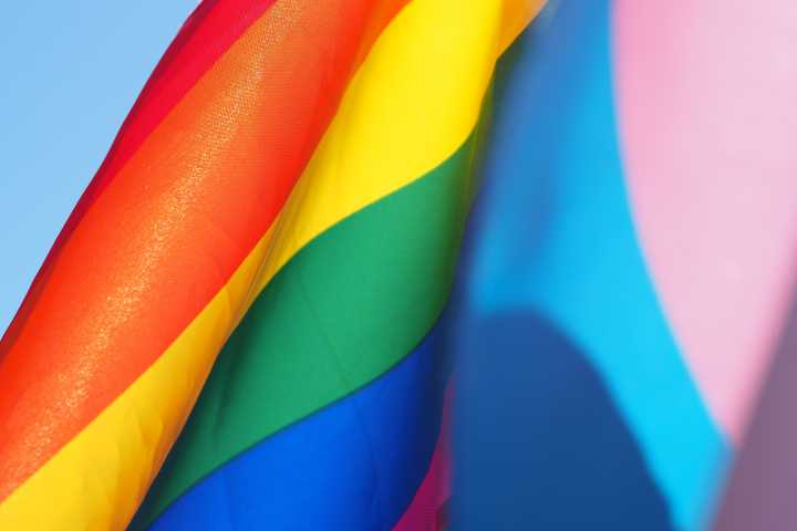 Homofobia Chechenia