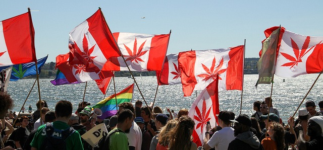 legalizacion de marihuana