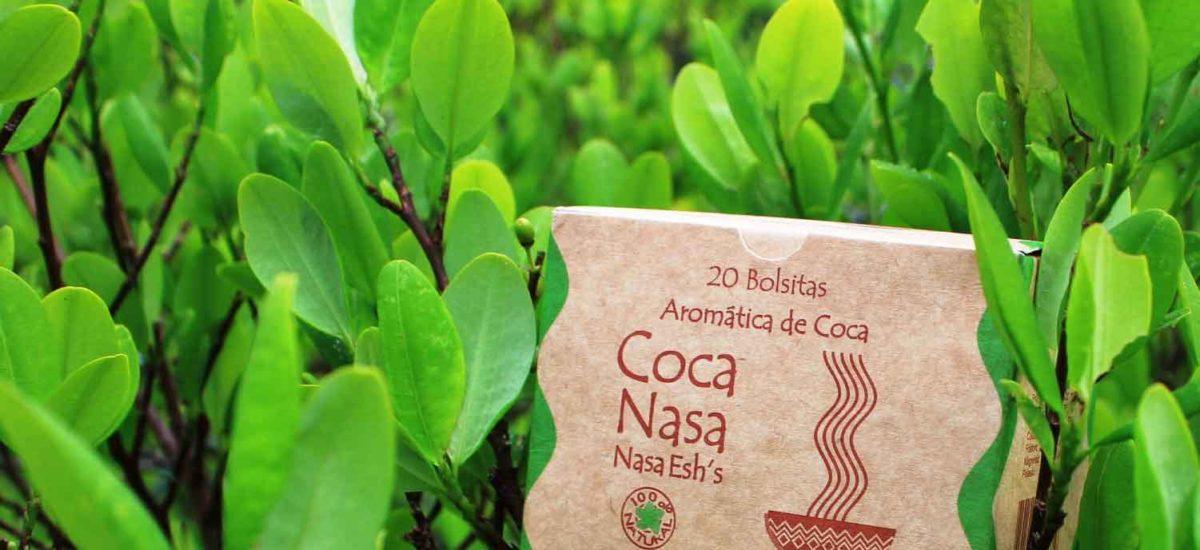 Coca nasa, Colombia, Corte Constitucional
