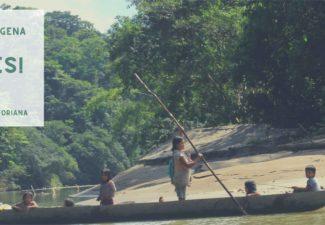 Taller indígenas