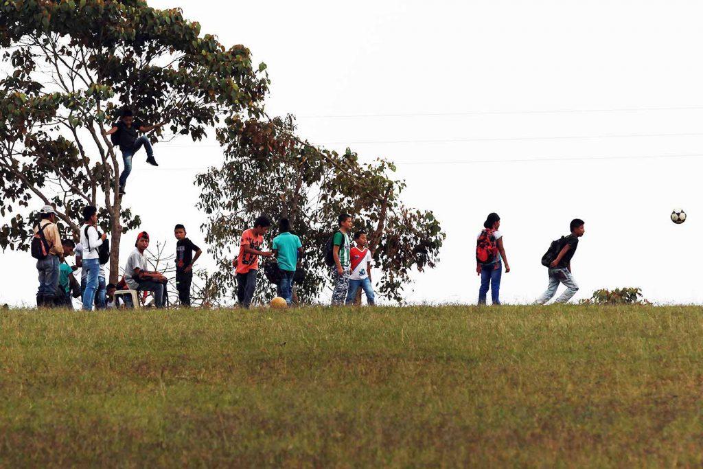 tutela zonas de reserva campesina