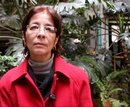 Yamile Salinas